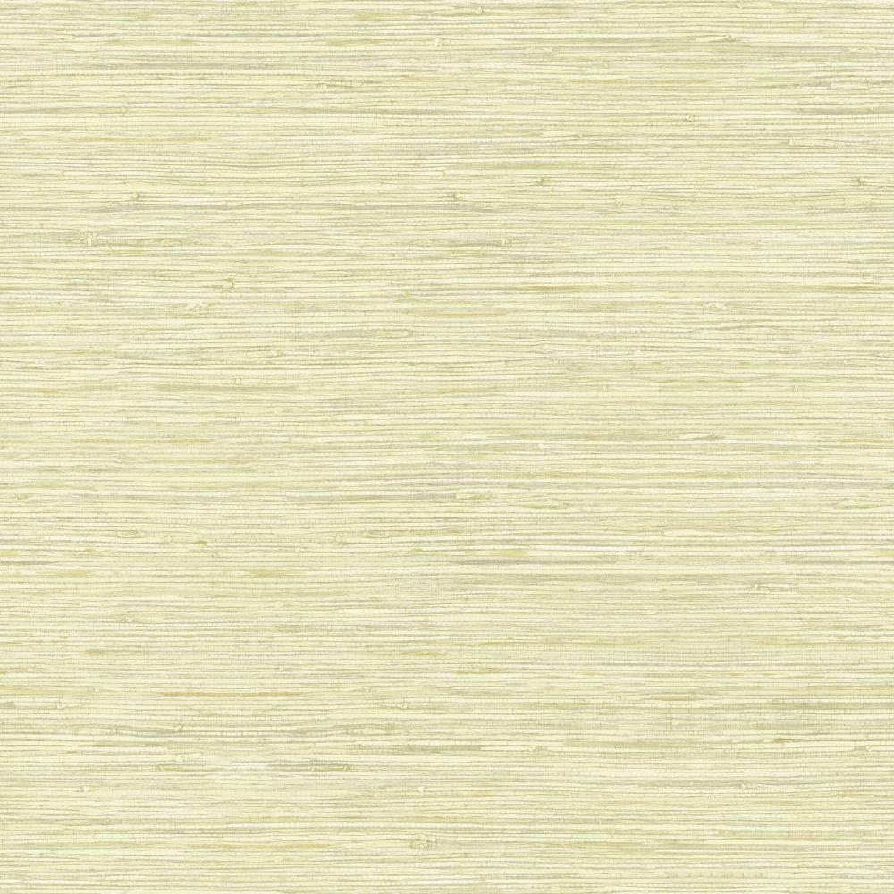 Vertical Grasscloth Wallpaper: York Wallcoverings Nautical Living Coral Shells Wallpaper