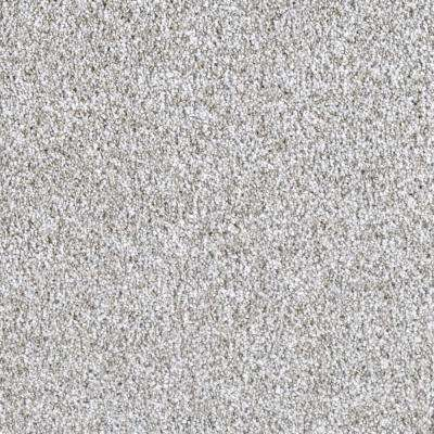 Carpet Sample - Wonderfully Made I - Color Bell Gable Texture 8 in. x 8 in.