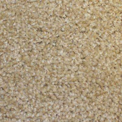 Carpet Sample - First Base - Color Home Plate Twist 8 in. x 8 in.