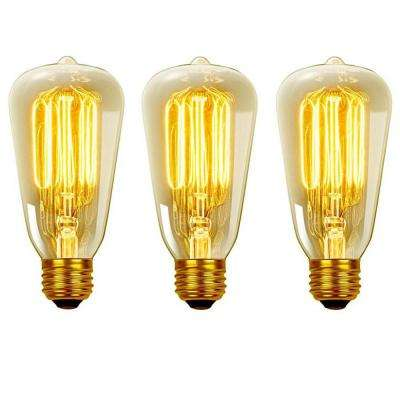 40-Watt Vintage Edison S60 Squirrel Cage E26 Incandescent Filament Light Bulb - Antique Edison (3-Pack)