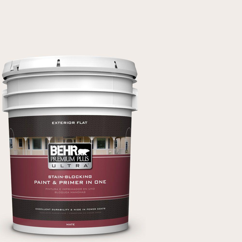 5 gal. #RD-W10 New House White Flat Exterior Paint and Primer
