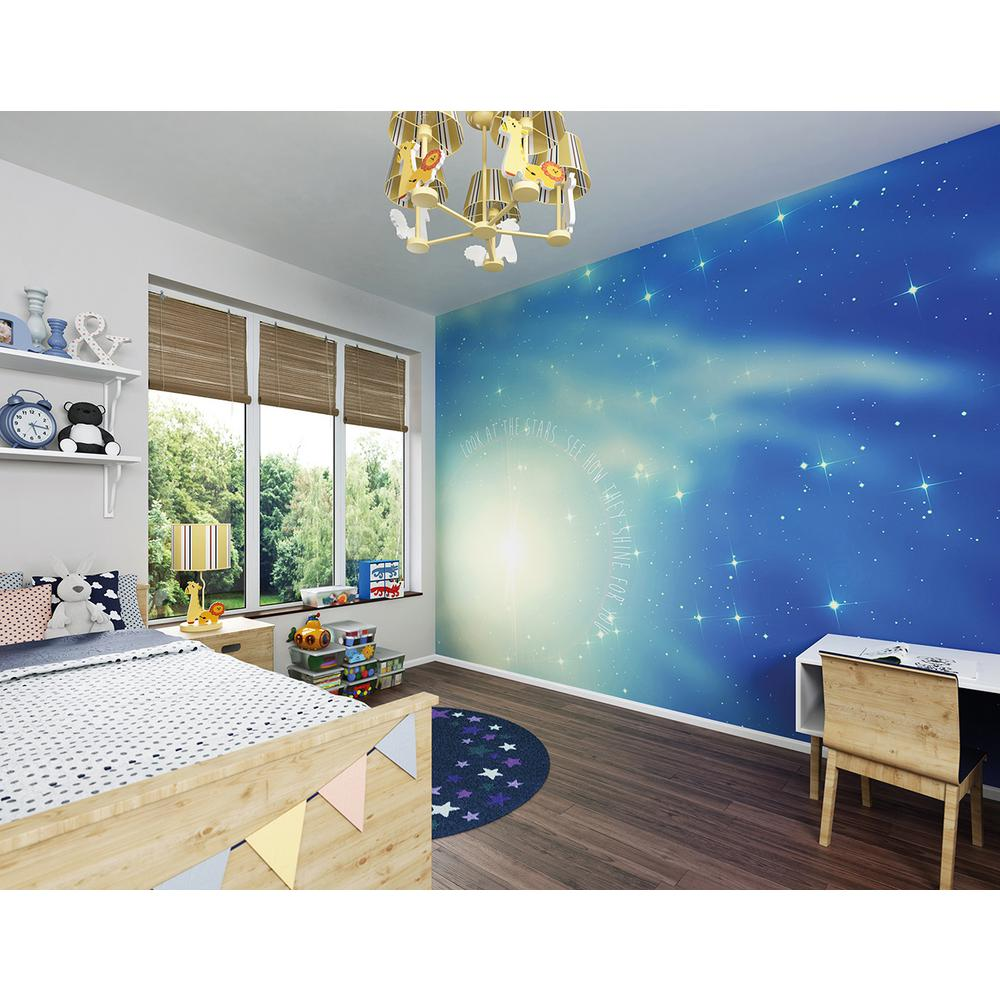 Brewster 118 in x 98 in look at the stars wall mural for Brewster wall mural