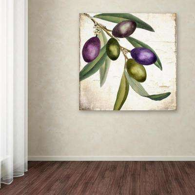 "24 in. x 24 in. ""Olive Branch I"" by Color Bakery Printed Canvas Wall Art"
