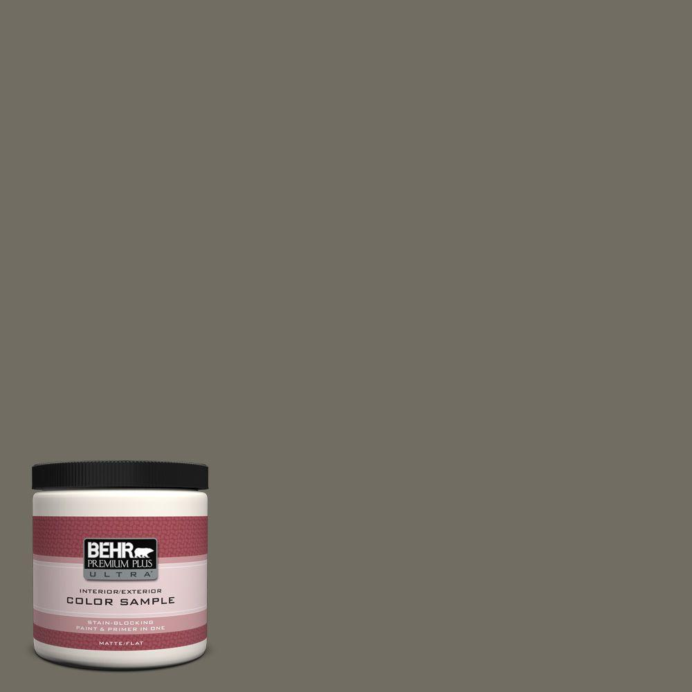 8 oz. #790D-6 Dusty Mountain Flat Interior/Exterior Paint and Primer in