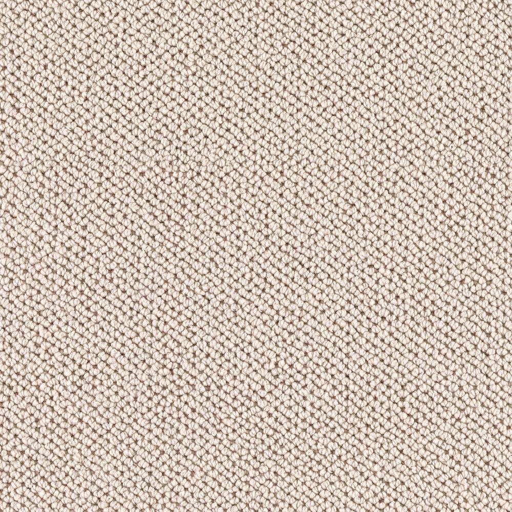 TrafficMASTER Priority - Color Raw Silk Pattern 12 ft. Carpet
