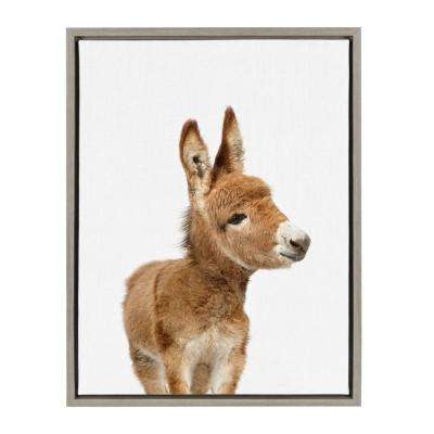 "Sylvie ""Animal Studio Burro"" by Amy Peterson Framed Canvas Wall Art"