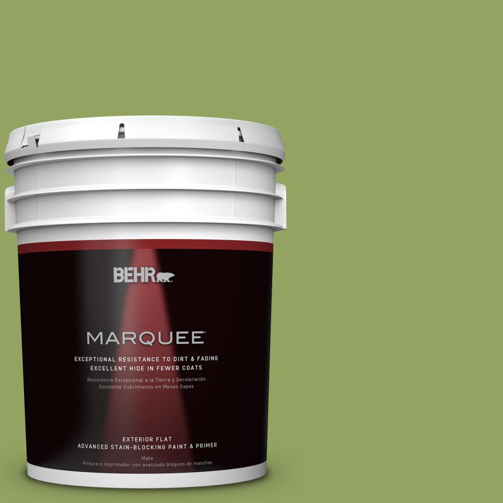 Home Decorators Collection 5-gal. #HDC-MD-15 Zesty Apple Flat Exterior Paint