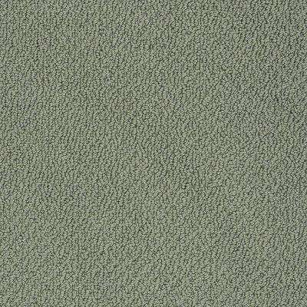 Carpet Sample - Treasure - In Color Rolling Hills Loop 8 in. x 8 in.