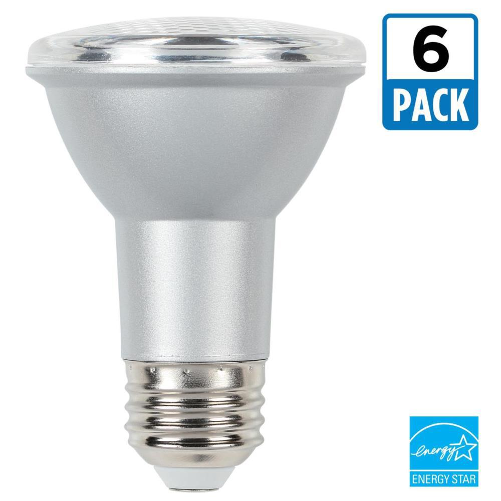 50W Equivalent Cool Bright PAR20 Dimmable LED Flood Light Bulb (6-Pack)