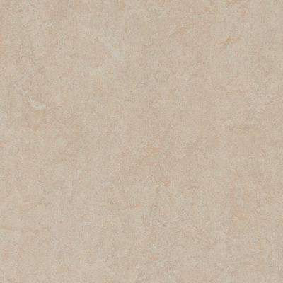 Silver Birch 9.8 mm Thick x 11.81 in. Wide x 11.81 in. Length Laminate Flooring (6.78 sq. ft. / case)