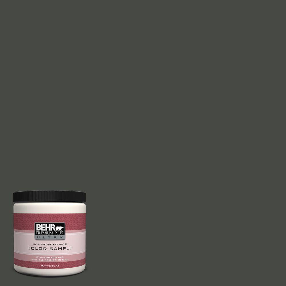 BEHR Premium Plus Ultra 8 oz. #710F-7 Black Swan Interior/Exterior Paint Sample