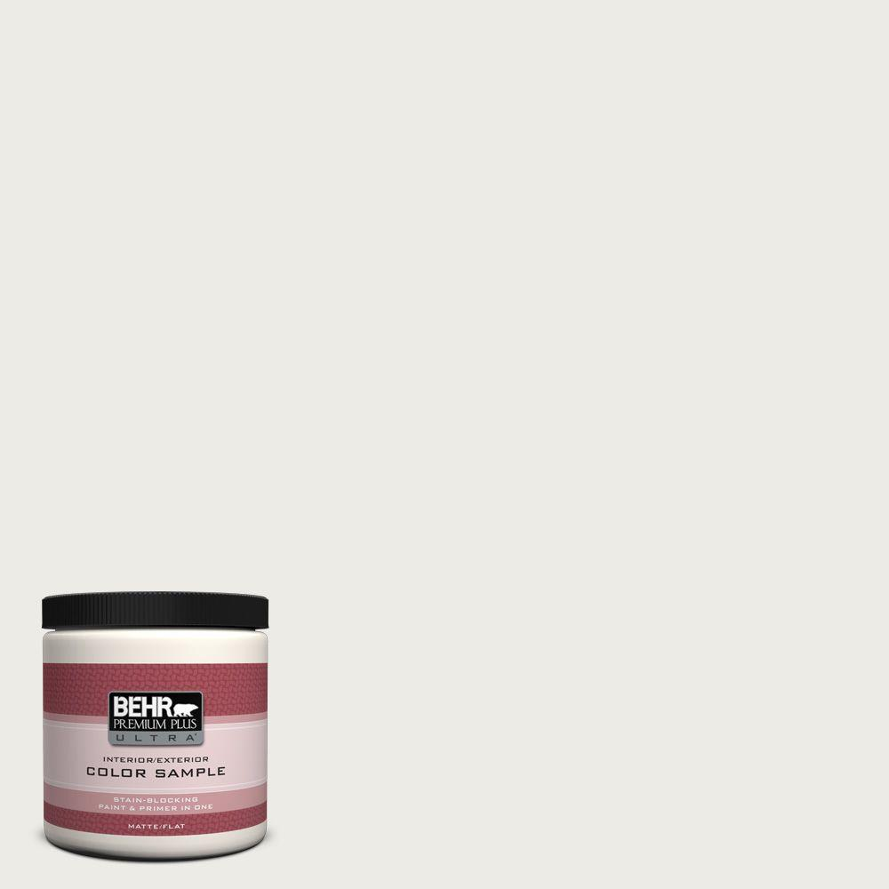 8 oz. #BWC-20 Melting Icicles Matte Interior/Exterior Paint and Primer in