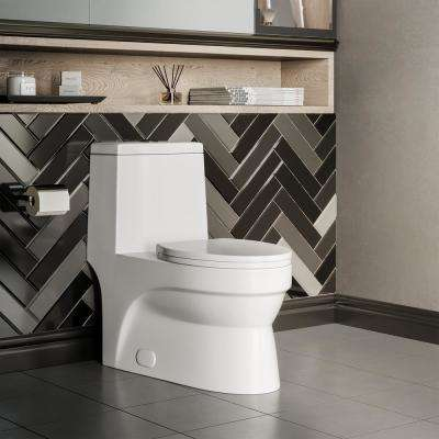 Virage 1-piece 0.8/1.28 GPF Dual Flush Elongated Toilet in White Seat Included