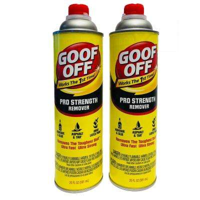 20 oz. Professional Strength Pourable Multi-Surface Remover (2-Pack)