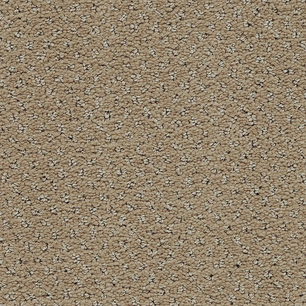 Pretty Penny - Color Earth Tone Pattern 12 ft. Carpet