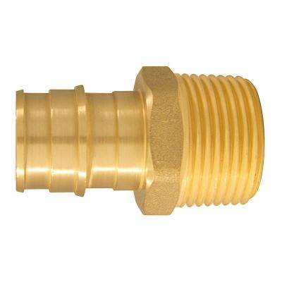3/4 in. Brass PEX-A Expansion Barb x 3/4 in. MNPT Male Adapter (10-Pack)