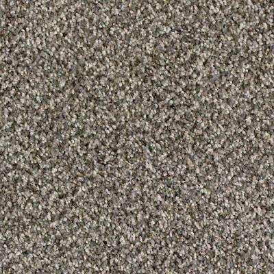 Carpet Sample - Briarmoor I - Color Ironwork Texture 8 in. x 8 in.