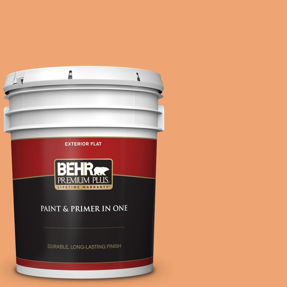 Behr Premium Plus 5 Gal Home Decorators Collection Hdc Sp16 04 Apricot Jam Flat Exterior Paint Primer 440005 The Home Depot