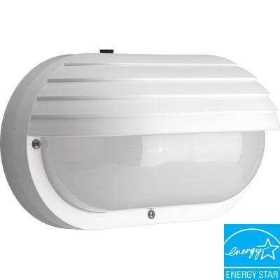 Polycarbonate Collection 2-Light Outdoor White Wall Lantern