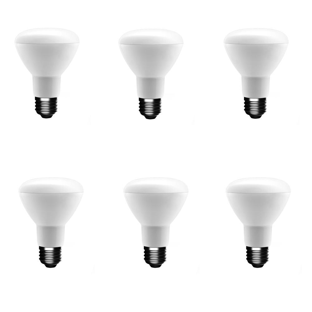 50-Watt Equivalent BR20 Dimmable CEC LED Light Bulb Soft White (6-Pack)