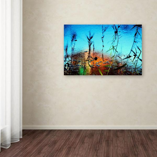 16 In X 24 In Painted By Nature By Beata Czyzowska Young Printed Canvas Wall Art