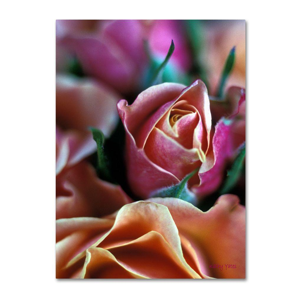 Trademark Fine Art 19 in. x 14 in. Mauve and Peach Roses Canvas Art