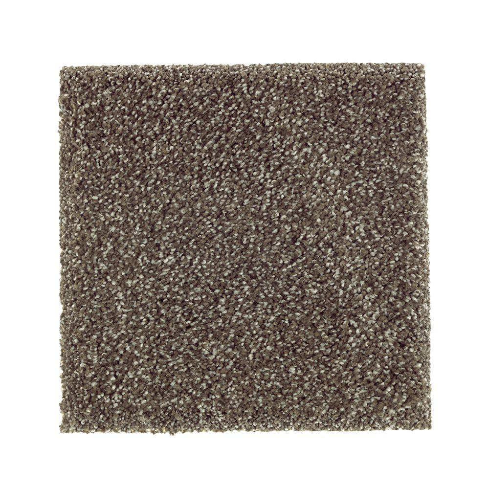 Petproof carpet sample whirlwind i color true taupe for Taupe color carpet