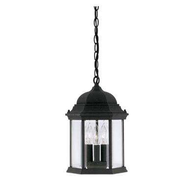 Erving Collection 3-Light Black Outdoor Hanging Foyer Light
