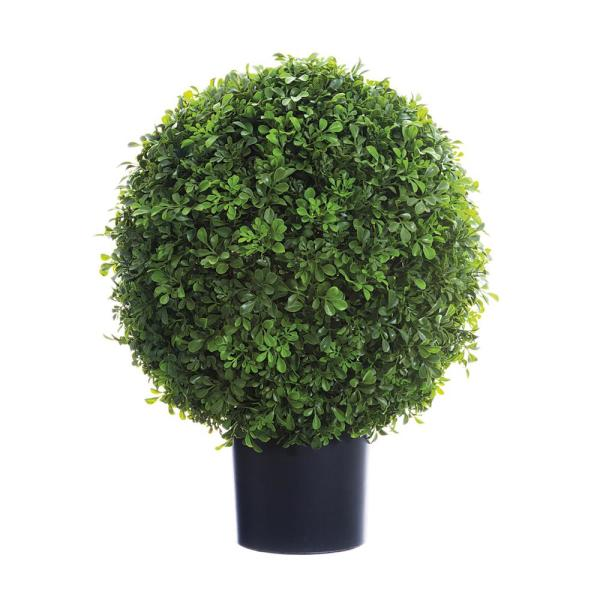 22 in. Boxwood Ball Topiary in Nursery Pot