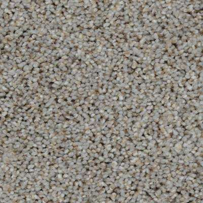 Carpet Sample - Trendy Threads I - Color Oakmont Texture 8 in. x 8 in.