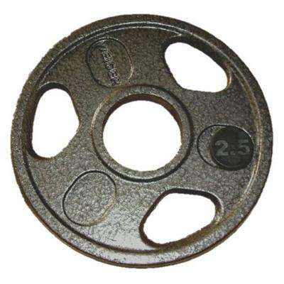 2.5 lb. Olympic Handle Hammertone Plate