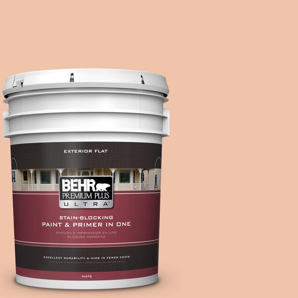 BEHR Premium Plus Ultra Home Decorators Collection 5-gal. #HDC-FL13-4 Pumpkin Mousse Flat Exterior Paint