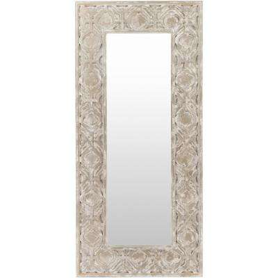 Katsia 35 in. x 75 in. Contemporary Framed Mirror