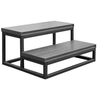 21 in. x 30 in. x 14 in. 2 Tier Spa Step in Mist