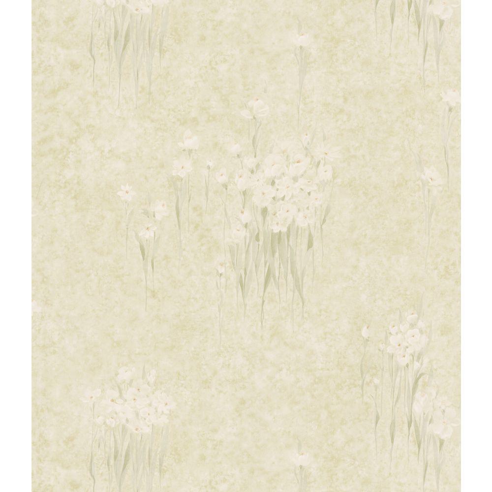 Brewster Bath Bath Bath III Green Iris Floral Wallpaper Sample
