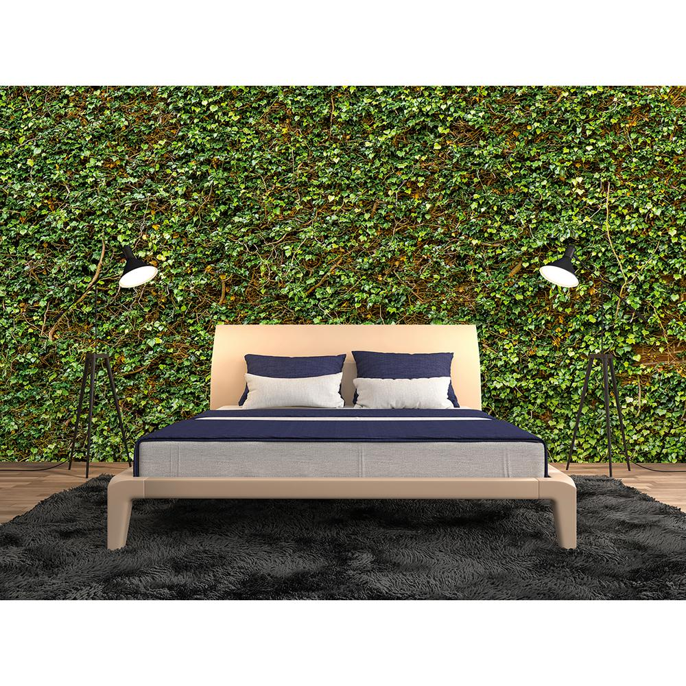Ideal Decor Ivy Nature Wall Mural DM979 The Home Depot