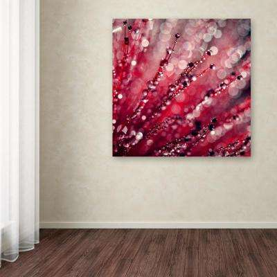 "14 in. x 14 in. ""Red Melody"" by Beata Czyzowska Young Printed Canvas Wall Art"