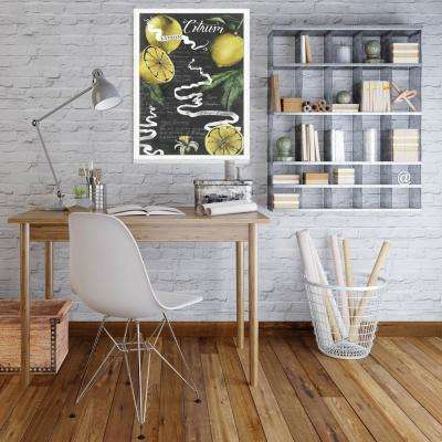 31.75 in. x 19.75 in. 'Chalkboard Citrus I' by Grace Popp Fine Art Paper Print Framed with Glass Wall Art