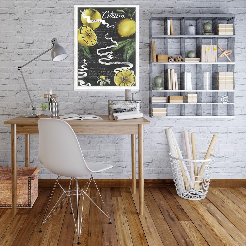 31.75 in. x 19.75 in. 'Chalkboard Citrus I' by Grace Popp Fine Art Paper Print Framed with Glass Wall Art