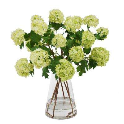 21 in. Viburnum Snowballs Bouquet in Glass Beaker Vase