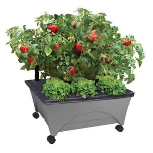 Deals on City Pickers 24.5 in. x 20.5 in. Patio Raised Garden Bed Kit