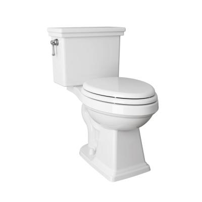 Lexington Tall Height 2-Piece 1.28 GPF Single Flush Elongated Toilet with Slow Close Seat in White