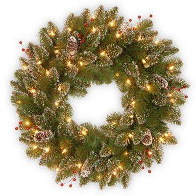 Glittery Mountain Spruce 24 in. Artificial Wreath with Battery Operated Warm White LED Lights