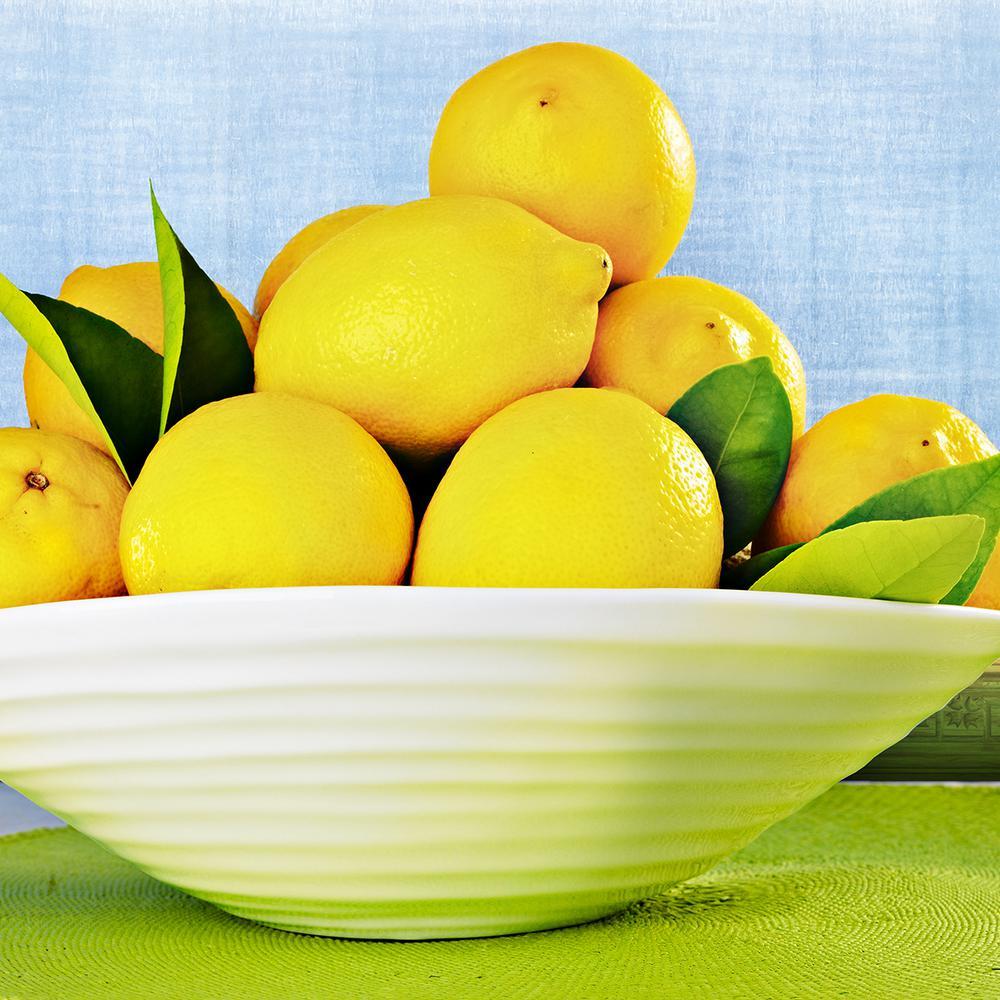 Lemon Citrus Tree - Eureka  - 1 Plant