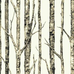 York Wallcoverings Birchwood Wallpaper by York Wallcoverings