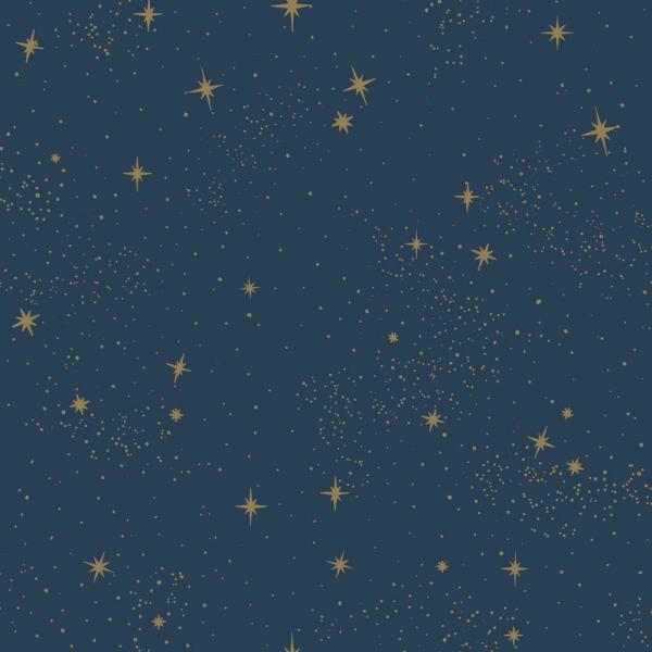 Upon A Star Vinyl Peelable Wallpaper (Covers 28.18 sq. ft.)