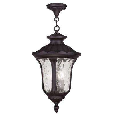 Providence 3-Light Outdoor Bronze Incandescent Pendant