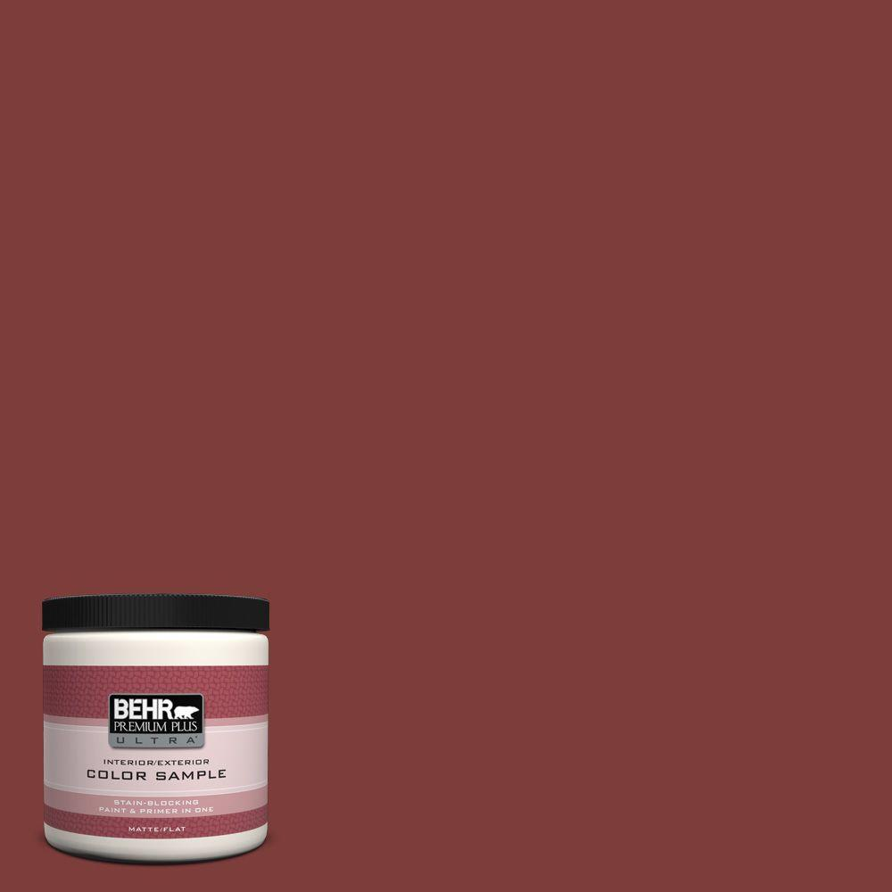 Ul110 2 Raw Cinnabar Matte Interior Exterior Paint And Primer In One Sample