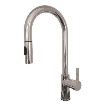 Charmant Rigo Single Handle Pull Down Sprayer Kitchen Faucet With Water Saver In  Polished Chrome