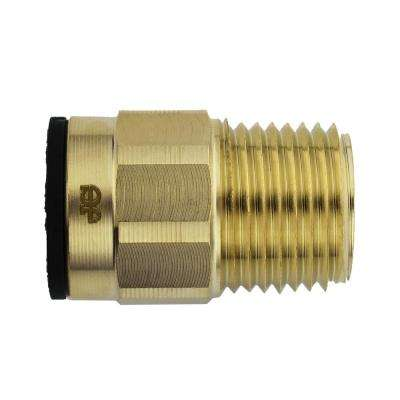 3/8 in. CTS x 1/2 in. NPT Brass ProLock Push-to-Connect Male Connector (10-Pack)